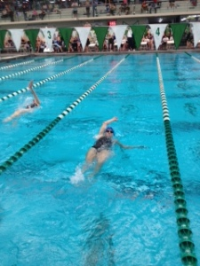 Arlington Masters Swimming